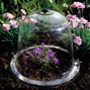 Baby Victorian Bells (Cloches) - Pack of 3