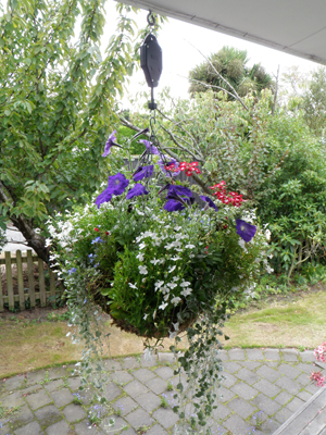Hi-Lo Hanging Basket Height Adjuster