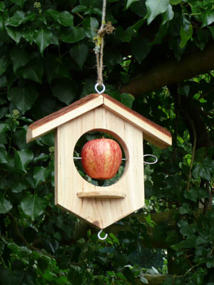 Wooden Bird Feeder Applehouse