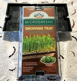 Microgreen Sprouting Tray (Fothergills)