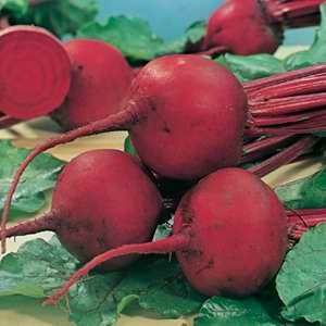 Beetroot Detroit - 10g Bulk
